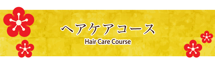 haircourse